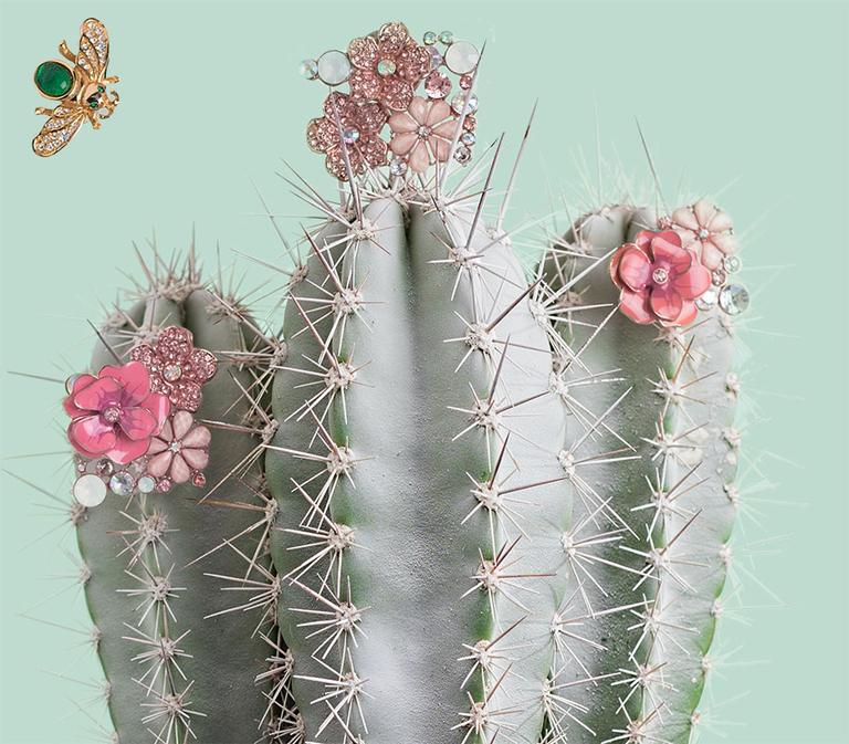The Cactus Flower fragrance