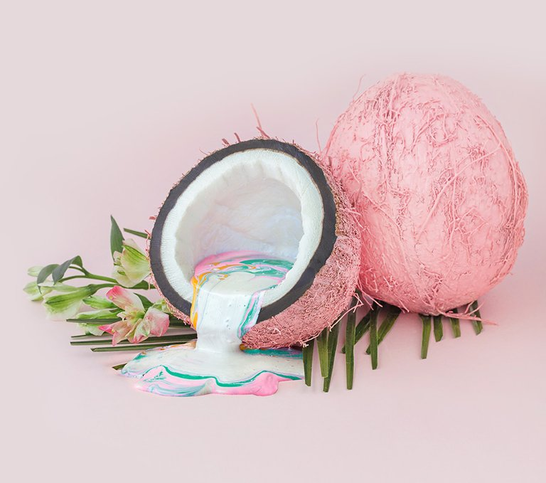 The Coconut Santal fragrance