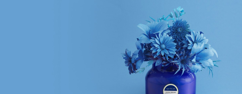 Capri Blue Fragrances