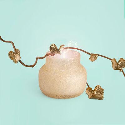 Pumpkin Dulce Glam Petite Jar, 8 oz product with fairytale vines