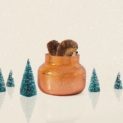 Pumpkin Dulce Glitz Petite Jar Surprise