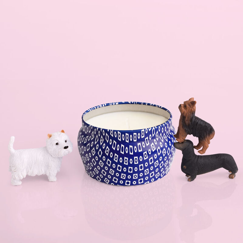 Cactus Flower Blue Mini Cute Candle product with puppies image number 3